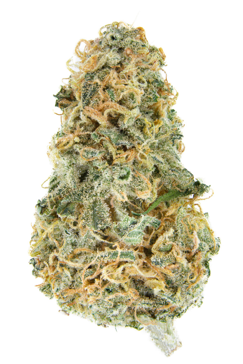 Blue Cheese Dried Cannabis Flower Grown by WMMC